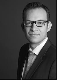 Prof. Dr. Niklas B. Homfeldt